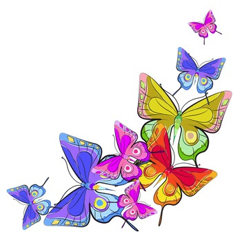 Passion with online business butterfly image