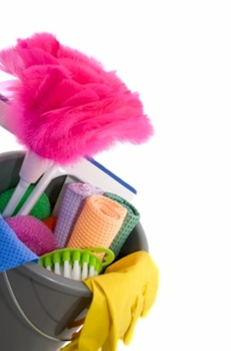 Clean Up With This Home Business Idea